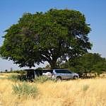 Gaborone to Makgadikgadi Pans